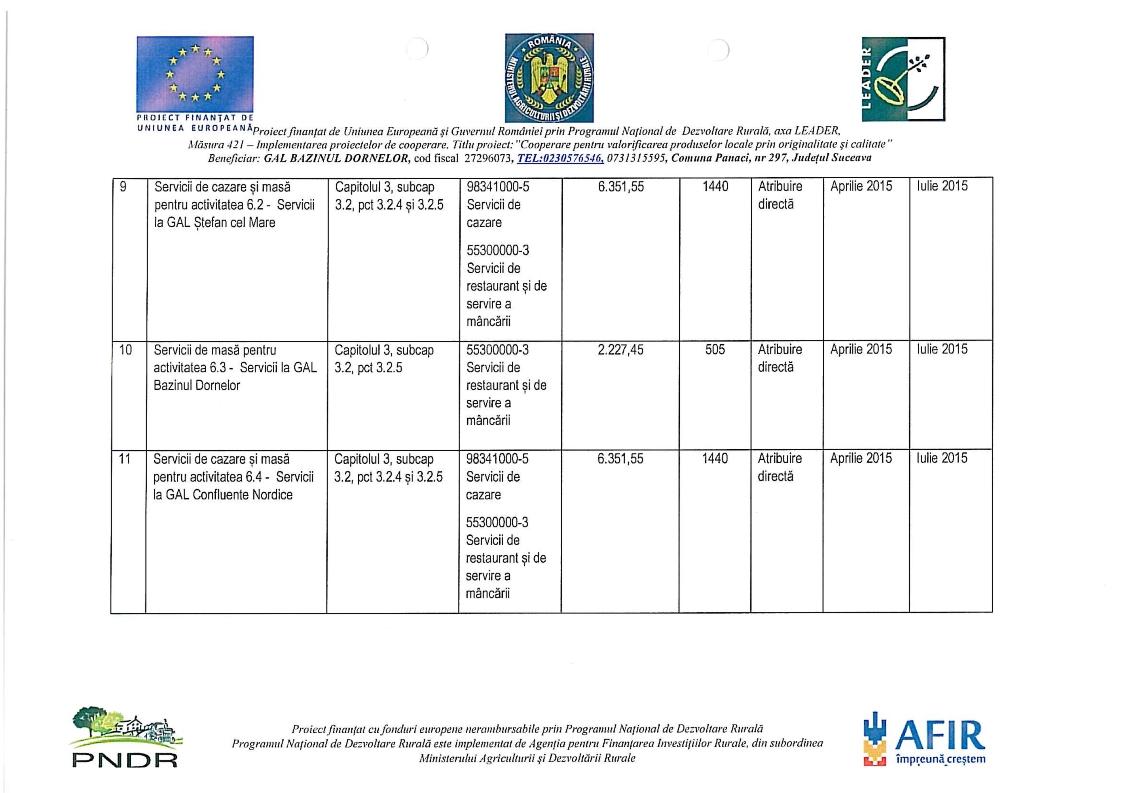Program achizitii 421_003