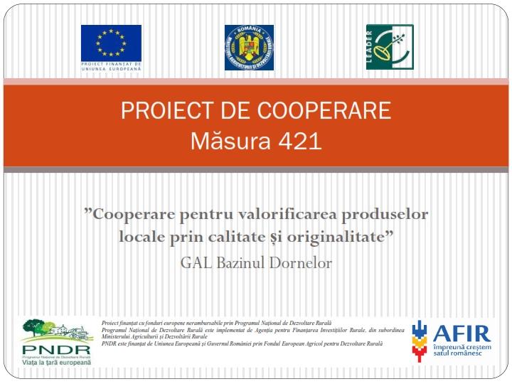 Proiect 421m_001